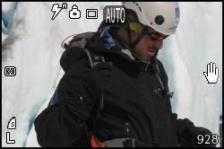 Bjorn sul ghiacciaio
