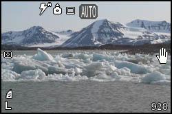 Ice in Kongsfjorden